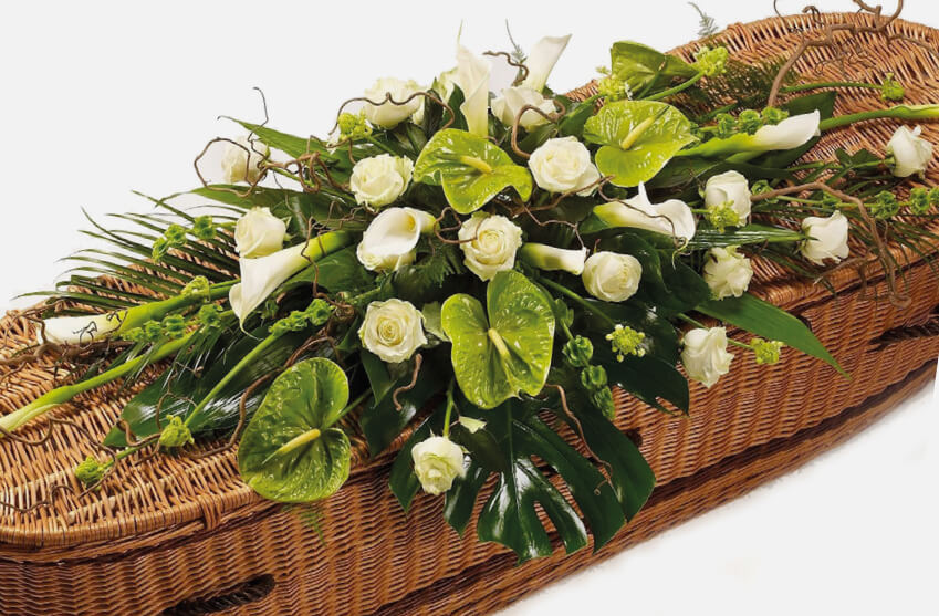 Tropical coffin flowers
