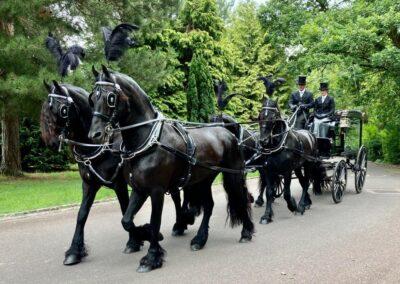 Funeral directors chelmsford